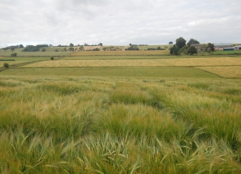 Photograph showing the Centre for Sustainable Cropping at Balruddery Farm