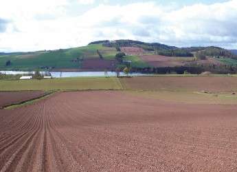 View of a Scottish field