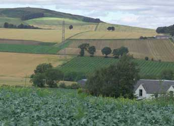 View of fields and hills