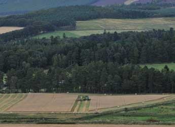 Photograph of farmland and forest