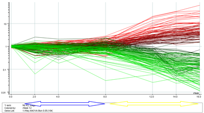Figure 4: Changes in gene expression around dormancy break in Ribes – red = upregulated, green = downregulated. Blue arrow denotes winter period, yellow denotes spring.