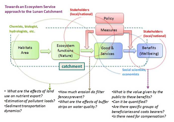 Exploring Ways For The Application Of Ecosystem Services