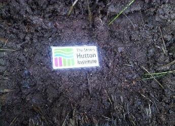 Digital Soil Morphometrics