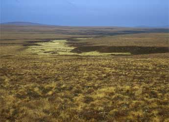 Photograph of a peatbog in Caithness (© Willie Towers)