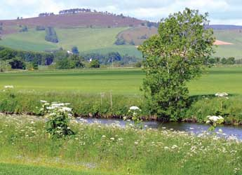 Photograph of a river bank and fields
