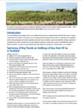 PDF file: What is happening on Scotland's small 'farms'? information note (opens in a new window)