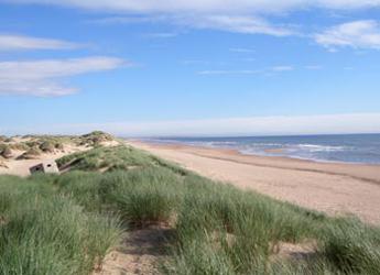 Photograph of coastal sand dunes