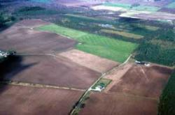 Arable land on the Black Isle with recent drainage