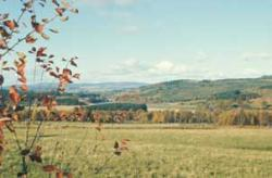 Arable land in River Dee valley, Aberdeenshire