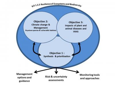 RD: 1.3.3 Resilience of ecosystems and biodiversity